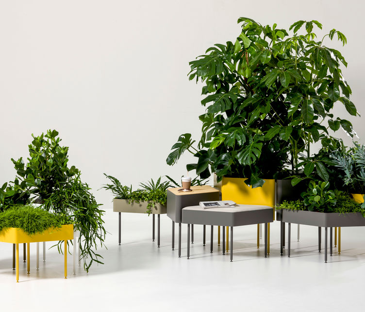 Rombo Planter by Emiliana Design Studio